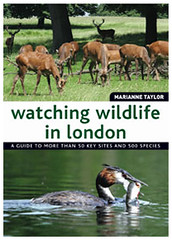 Watching Wildlife London (Books on London) Tags: animalpictures londonparks plantidentification birdidentification birdpictures plantpictures wildlifeguide animalidentification wildlifeinlondon booksonlondonrangeofguidetoenglandscapital watchingwildlifeinlondon invertebratespictures invertebrateidentification