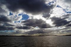 DSC01600 (Jessie K Smith) Tags: ocean trip newzealand vacation sky holiday nature beautiful landscape islands bay scenery tour dolphin dolphins nz maori bayofislands kiwi pahia