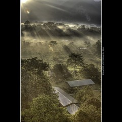 Malaysia: Morning has broken [Explored] (Bas Lammers) Tags: road sun house mist mountains tree fog forest sunrise canon airport miri jungle malaysia layers cave sunray mulu 50d