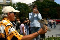 Alimentador de gorriones para disfrute de los turistas.-Pars (Alphonso Mancuso) Tags: gente turismo calles pars