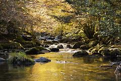 Riviere (Little Boy 09) Tags: water les trois creek montagne automne canon river eos la eau riviere 17 50 tamron f28 ariege rabat 500d ruisseau seigneurs freyte