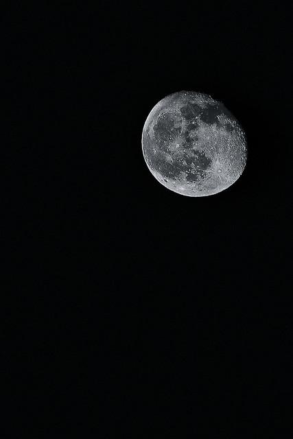 287/365: Sister Moon