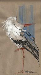 Blue & Orange (Jennifer Kraska) Tags: blue orange bird art sketch jennifer stork kraska jenniferkraska