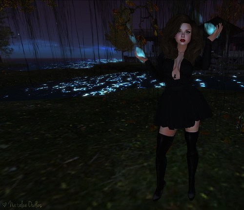 ZombiePopcorn Hunt 5; Have a Witchy Holiday; ONE