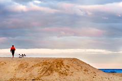 (danielle kiemel) Tags: ocean sunset sea portrait people man male guy beach dogs animals landscape freedom evening sand afternoon photographer small strangers australia lagoon nsw centralcoast sanddunes wamberallagoon daniellekiemel wamberalbeach