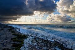 IMGP5433 - Dramatic beach, Rügen, Germany (charlei01) Tags: ocean blue sea sun green clouds dark sand waves wind algae