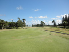 Turtle Bay Colf Course 117