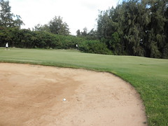 Turtle Bay Colf Course 348