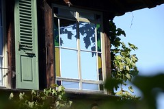Light And Shadow (AincaArt) Tags: window fenster vine stainedglass grape lightandshadow stainedglasswindow berneroberland berneseoberland rebe fensterladen traube faulensee windowshutter buntglas mungga buntglasfenster nikond7000 aincaart
