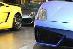 Lamborghini Gallardo LP560-4 Bicolore (This will do) Tags: china car automobile shanghai super lamborghini gallardo bicolore lp5604 lp570