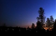 Skatboet (TinaOo) Tags: tree lights evening heaven himmel birch björk hus träd ljus kväll skatbo magpiesnest fotosondag fs111030