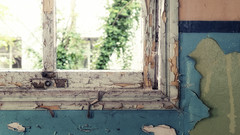 Eternal sunshine of a spotless mind (in 16:9) (fred:vr) Tags: abandoned window finestra fred asylum abbandono exop