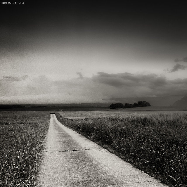 Follow the Road IV