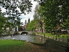 De brug naar het Begijnhof en de toren van Sint Salvatorskathedraal - The bridge to the Beguinage and the tower of St. Salvator Cathedral (2) (Johnny Cooman) Tags: bridge tree church architecture landscape boot boat duck belgium belgique brugge belgi natuur boom westvlaanderen bruges brug bateau bel arbre glise kerk baum brujas aaa eend architectuur landschap flanders belgien westflanders blgica zwaan vlaanderen flandern brgge belgia reien flandre flandes thegalaxy  brugia  flickraward flemishregion canons5 mygearandme flhregion