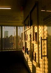 The New Museum 29 (Roz B.) Tags: nyc newyorkcity soho bowery 2011 lastfloor thenewmuseum resourcemediaroom