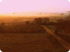Aετός ,Αμύνταιο. (kappa tsak) Tags: autumn arktouros φθινόπωρο καταφύγιο αετόσ αρκτούροσ
