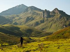 Camino del Torres (Caliaetu) Tags: espaa naturaleza nature asturias monte montaa vega torres asturies majada caso mayada acebal caleao casu caliao pelcaminasturias