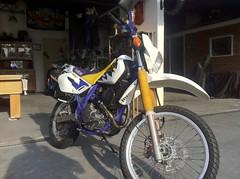 IMG_1556 (Adesivare) Tags: motoca