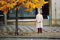 the guy with the trench coat (Dennis_F) Tags: city autumn man guy fall colors zeiss standing sony prag praha fullframe dslr bltter baum bunt farben 135mm stehen 13518 a850 sonyalpha sonydslr vollformat cz135 zeiss135 dslra850 sonya850 sonyalpha850 alpha850 sony135 sonycz135