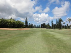 Turtle Bay Colf Course 163b