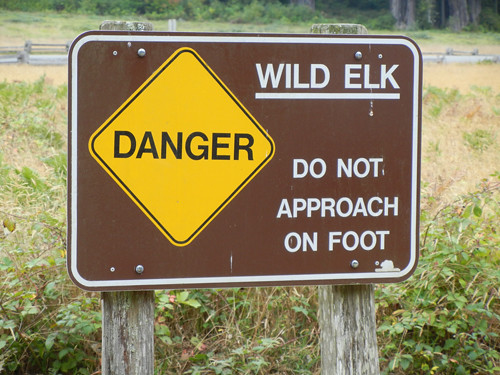 Elk Warning Sign _ 6987