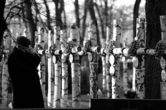 Polish Independence Day - 11.11.11 (Eastern Traveller) Tags: reflection cemetery war day peace respect wwi poland warsaw independence sorrow armistice warsawuprising 111111 powazki wojskowy polishindependence cementarz