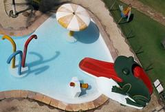 "Toadying (not exactly ""ass kissing"", but...) (Ric e Ette) Tags: brazil pool tongue brasil geotagged língua bra piscina frog toad ceará kap sapo kiteaerialphotography ce aquiraz hoteljangadeiro fotografiaaéreacompipa カイトフォト fotoaéreacompipa jacaúna geo:lat=393557799 geo:lon=3830743790"