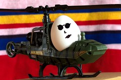 """Can You Fly This Thing?"" (SavingMemories) Tags: sunglasses movie army egg helicopter trinity thematrix armytoys savingmemories suemoffett canyouflythisthing"