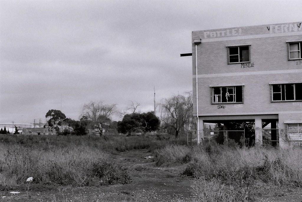 Gilbs-M, 35mm [C]