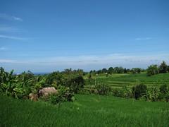 Indonesia (146) (Trekity) Tags: indonesia candidasa trekity