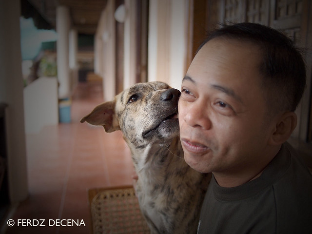 Claveria - Tiger and Me 2