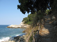 IMG_0964 (Kalikalos - Retreat centre on the Mount Pelion) Tags: yoga greece retreat meditation pelion workshops osho rawfood holistic vipassana selfdevelopment helenford fkit kalikalos olistico jockmillenson