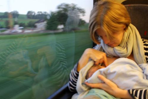 weegrub_2-3weeks_train
