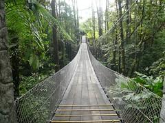 0200 Arenal Observatory Lodge Bridge (sdobie) Tags: 2011 arenal bridges costarica jungle lodge observatory vacation 500views