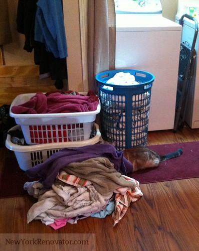 FTK_LaundryLivvy