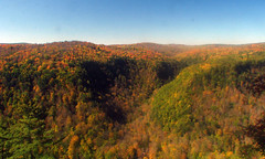 Colorful canyon (fishhawk) Tags: autumn trees color fall colors leaves october pennsylvaniagrandcanyon pinecreekgorge