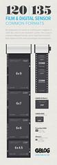 120 | 135 Film & Digital Sensor | Common Formats (Gustaf_E) Tags: 120 film 35mm mediumformat poster graphics grafik medium format info guide 135 infographics facts fakta mellanformat
