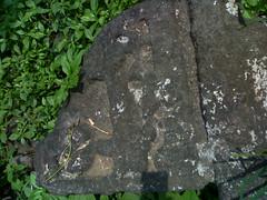 18102011896 (abhishek282) Tags: abhishek shivaji raje maharaj raireshwar bhor kumbhar kenjalgad sambhaji swarajya jijabai shivray