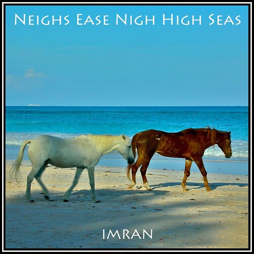 Neighs Ease Nigh High Seas - IMRAN™ by ImranAnwar