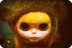 Little Lola Bear