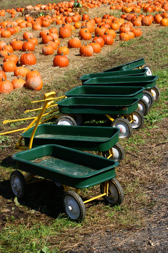 Green Wagons and Pumpkins