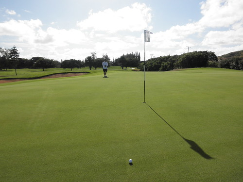 Turtle Bay Colf Course 095