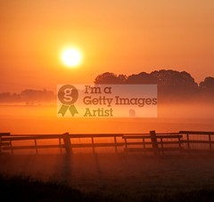 Misty Morning III (DolliaSH) Tags: morning light sunset sun mist holland color sol colors misty fog sunrise canon fence photography dawn lights soleil photo zonsondergang europe tramonto niceshot foto sonnenuntergang cows photos nederland thenetherlands sole sonne 18200 coucherdesoleil schiedam puestadelsol zuidholland zakat southholland 50d canoneos50d solntse dollia canonefs18200mmf3556is sheombar dolliash mygearandme ringexcellence