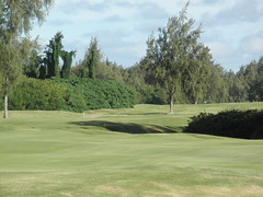 Turtle Bay Colf Course 326