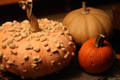halloween pumpkins 031