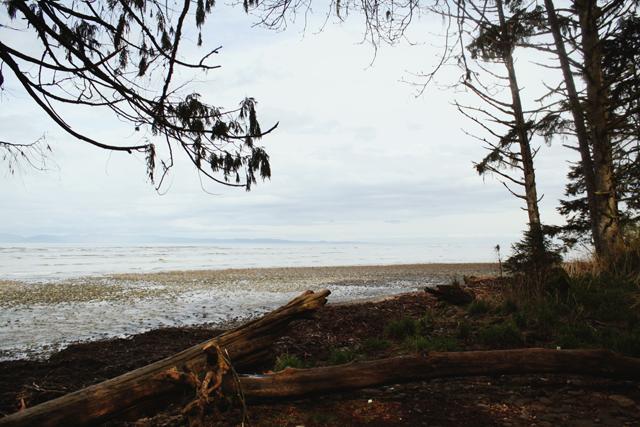 *murdock beach* {7}