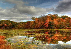 Autumn Lake (nebulous 1) Tags: autumn ohio lake color art fall nature water clouds landscape photography nikon artistic foliage gir stumplake autumnlake pundersonstatepark nebulous1