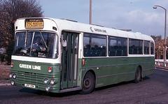 SMA19 Hampton Court 1 November 1978 (national_bus_510) Tags: nbc surrey alexander greenline aec nationalbuscompany londoncountry aecswift smaclass lcbs