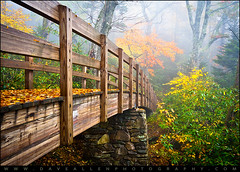Tanawha Trail Foot Bridge - Rough Ridge Autumn Foliage NC (Dave Allen Photography) Tags: roughridge tanawha trail foot bridge wood fall foliage autumn fog foggy grandfathermountain cove linn linncoveviaduct rough ridge hiking footbridge tanawhatrail nature woods fallfoliage leafchange weather forest appalachian appalachia appalachians daveallen nikon d700 wideangle 1735mm f11 leaves color colors southernappalachians parkway blueridgeparkway brp northcarolina wnc westernnorthcarolina seasons scenic seasonal blueridge landscape mountains blueridgemountains outdoors nc photography hike mountain orange yellow green trees mygearandmeplatinum mygearandmediamond