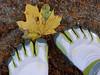 Digits for Binary Day (25/365) (bill.d) Tags: white green yellow concrete shoe leaf toe michigan unitedstatesofamerica kalamazoo adobecameraraw project365 forbesstreet project36525 vibramfivefingers chdk nikviveza canona590 topazinfocus project365110111